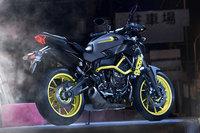 Yamaha MT-07 Moto Cage 2017