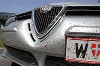 Tip Insekten Vom Auto Entfernen Service Motorlinecc